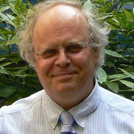 Prof Ingvar Bjarnason